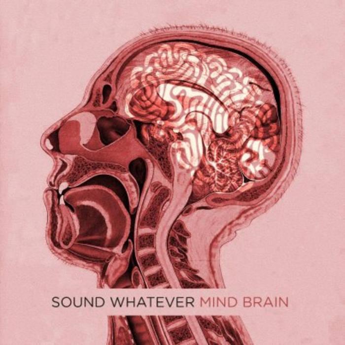 Mind Brain cover art