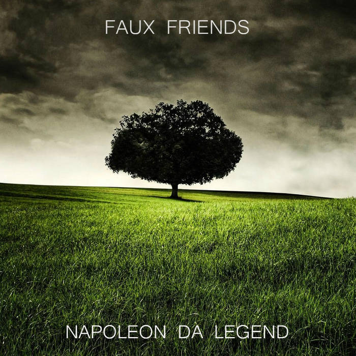 Faux Friends cover art