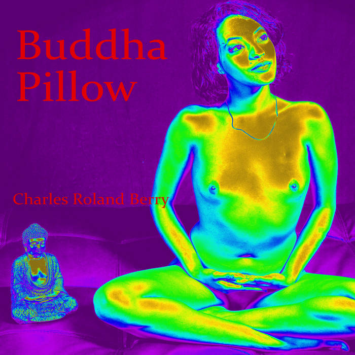 Buddha Pillow cover art