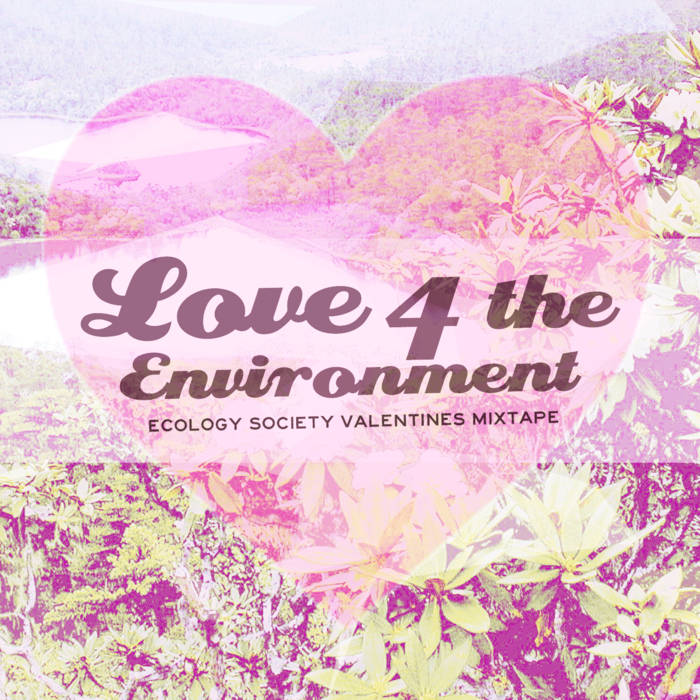 Love 4 the Environment cover art
