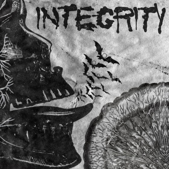 INTEGRITY Suicide Black Snake cover art