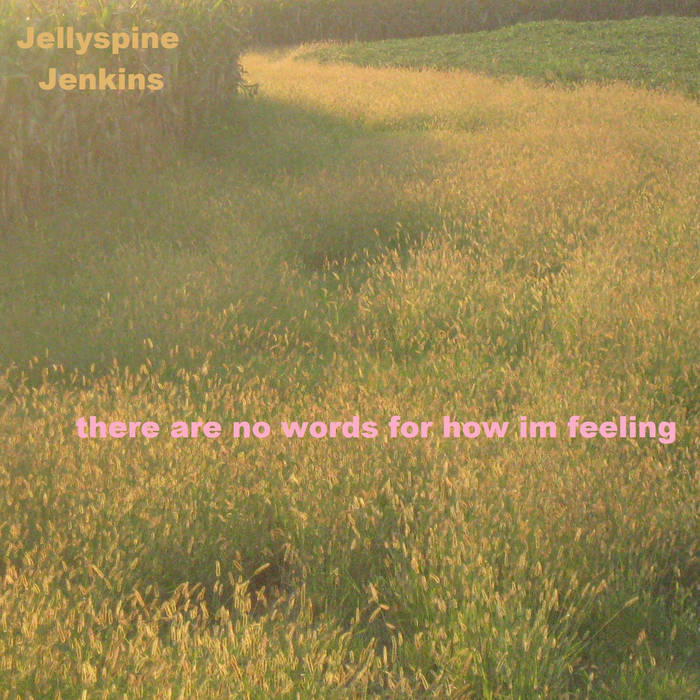 there are no words for how im feeling cover art