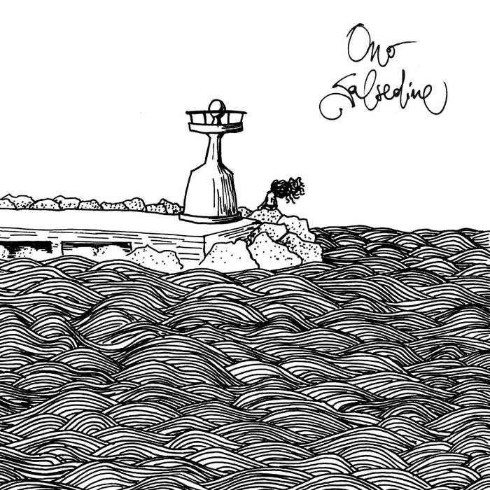 Salsedine cover art
