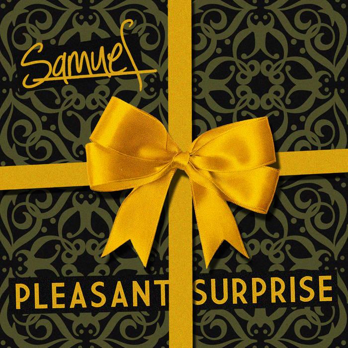 Pleasant Surprise cover art