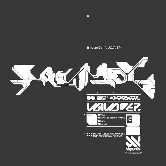 Vulva cover art
