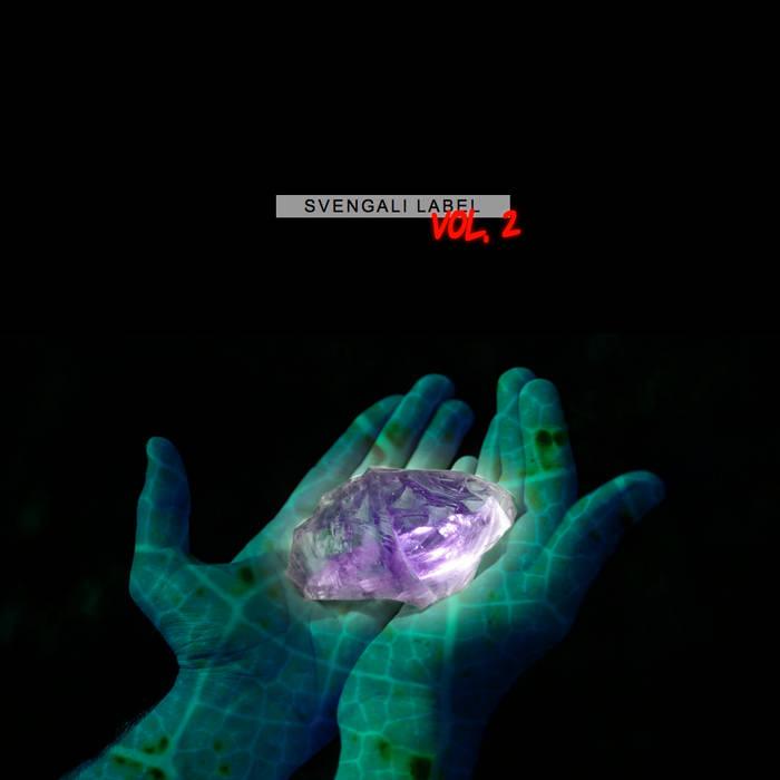 SVENGALI VOL. 2 (SVG002) cover art