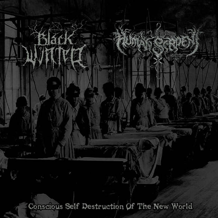 Conscious Self Destruction Of The New World (Split Album) cover art