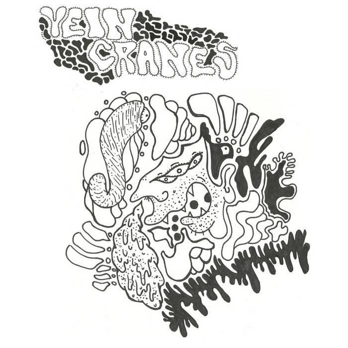 """VEIN CRANES-True Believer 7"""" cover art"""