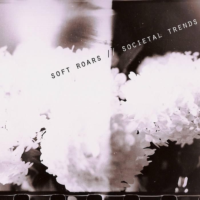 Societal Trends cover art
