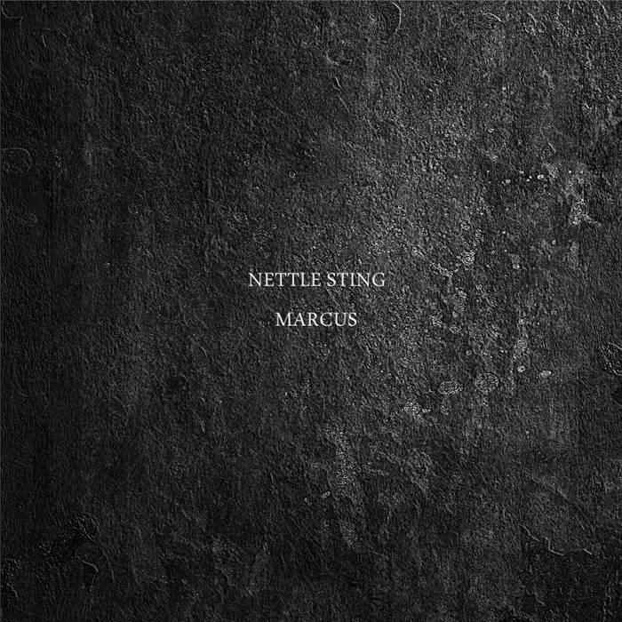 Nettle Sting cover art