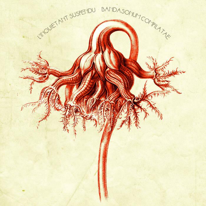 Bandasonum Compilatae cover art