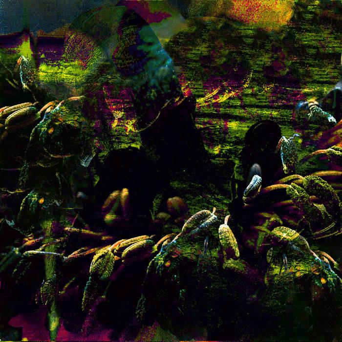 BURST VESSELS cover art