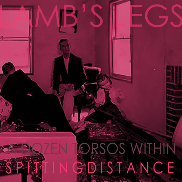 A Dozen Torsos Within Spitting Distance cover art