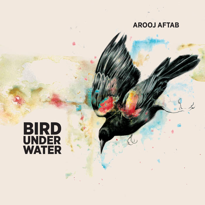 Bird Under Water cover art