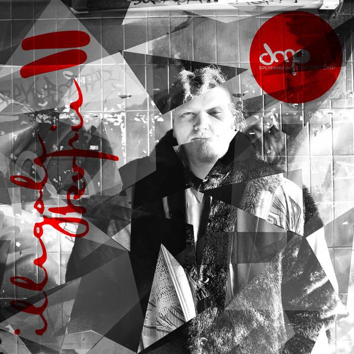 Styleist DMP - Illegale Kopie II -2015- cover art