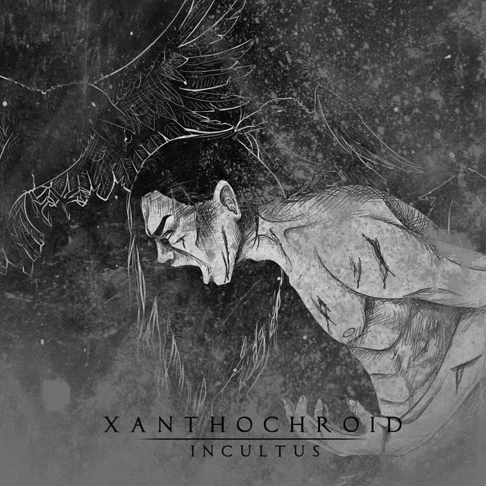 Incultus-2011 (2014 Remaster) cover art