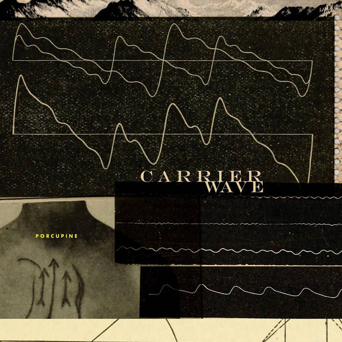 carrier wave cover art