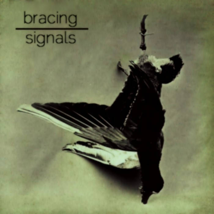 Signals cover art