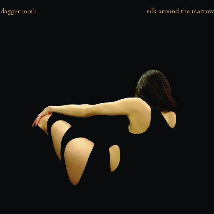 dagger moth_silk around the marrow cover art