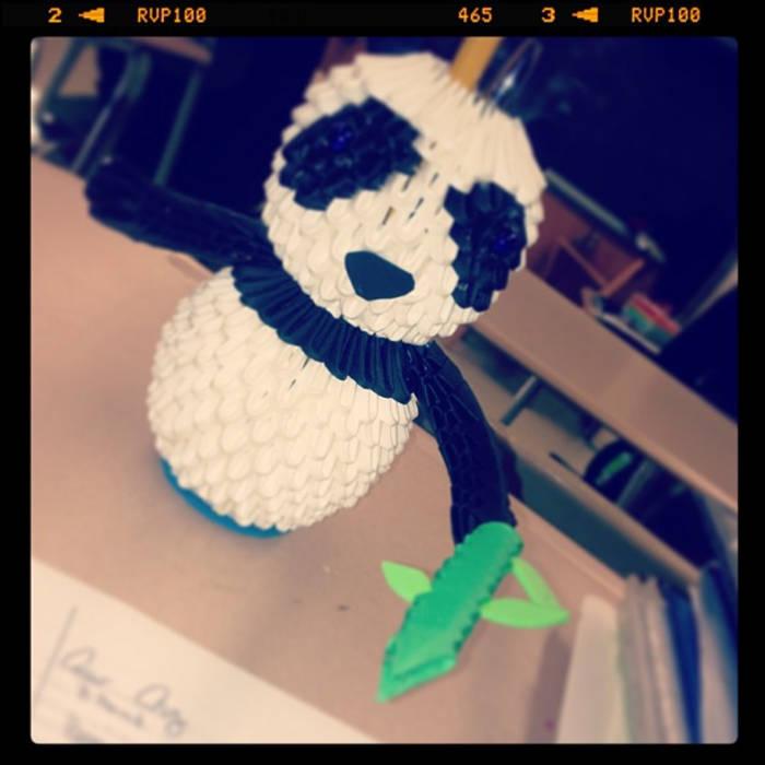 Pb vs The Panda:The Outer ring cover art