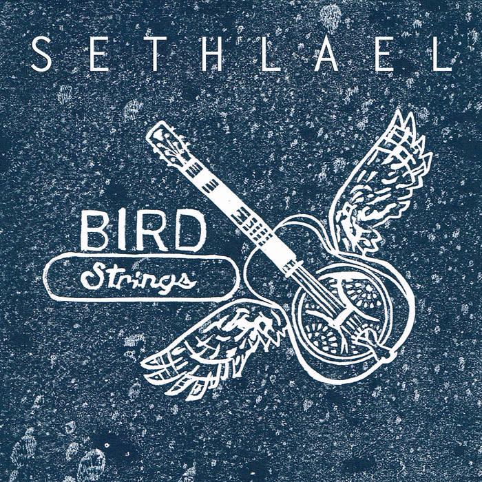 Bird Strings cover art