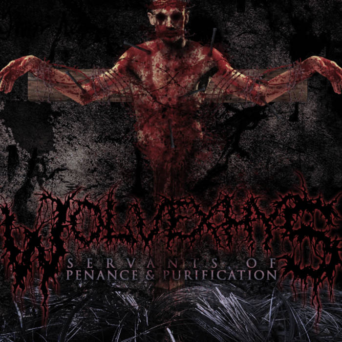 Servants of Penance and Purification cover art