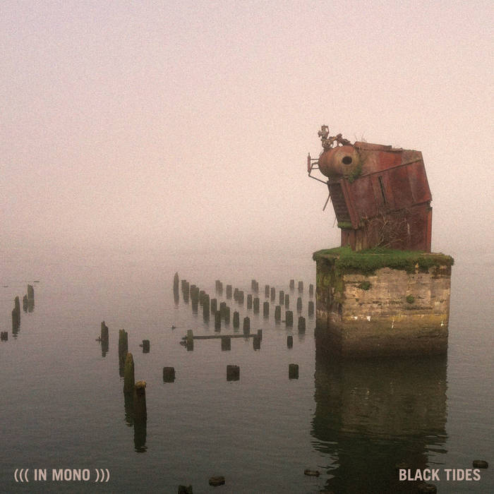 Black Tides cover art