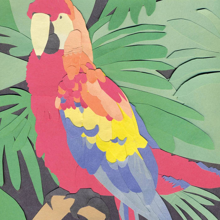 Parrot Flies cover art