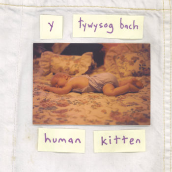 Human Kitten - Manic Pixie Dream Boy