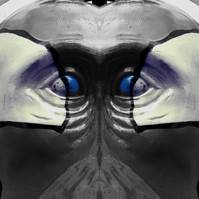 Blue Gorilla cover art