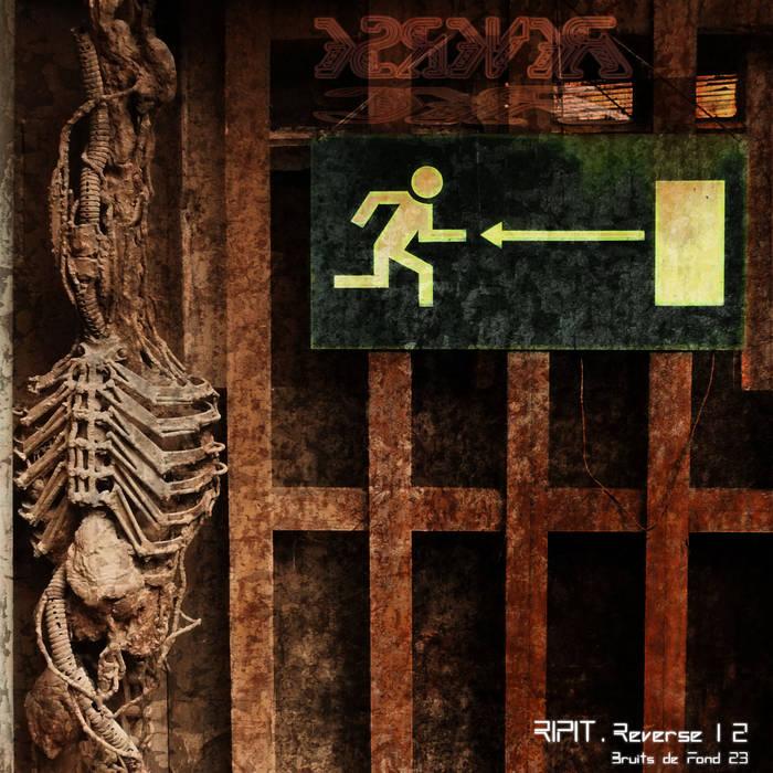 Reverse 12 cover art