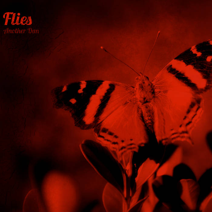 Flies cover art