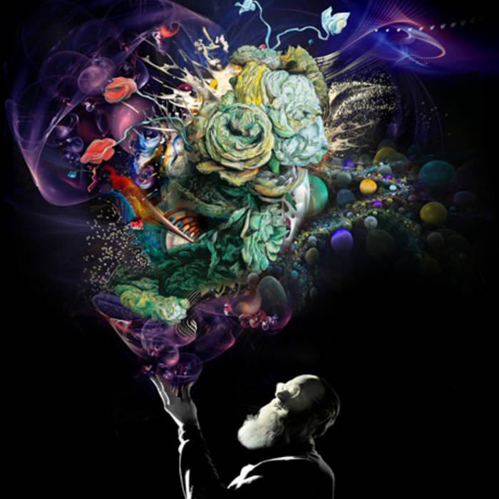 Organic to Digital cover art