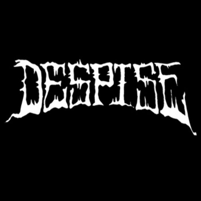 Despise cover art