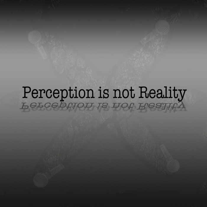 Perception is not Reality cover art