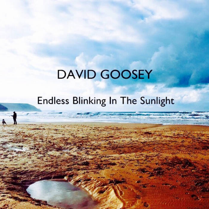 Endless Blinking In The Sunlight cover art