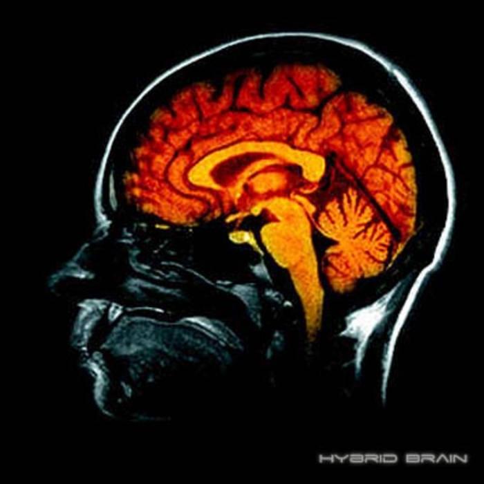 Hybrid Brain (Single) cover art