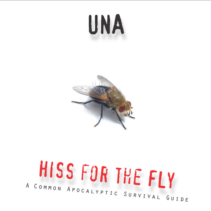 Hiss for the Fly cover art