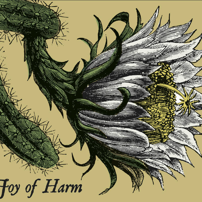 Joy of Harm cover art