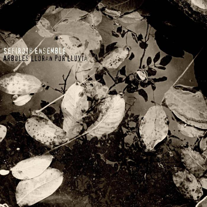 Arboles lloran por lluvia cover art