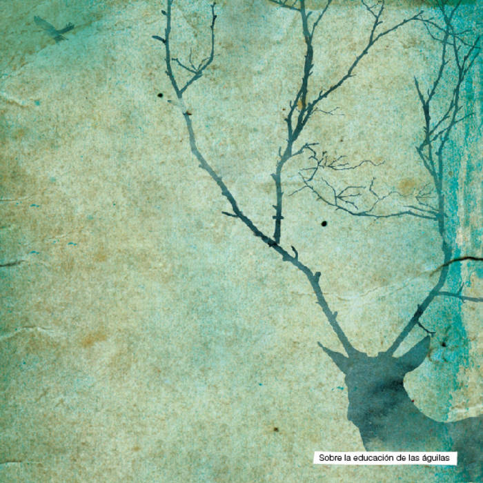 Sobre la Educación de las Águilas - Blien Vesne cover art