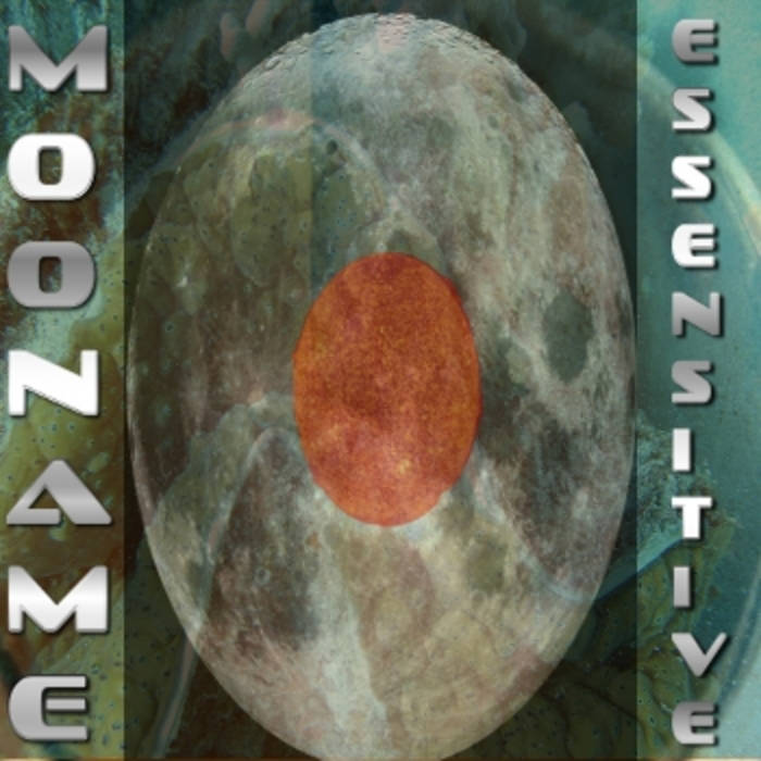 essensitive cover art
