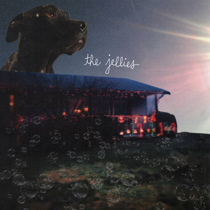 the jellies cover art