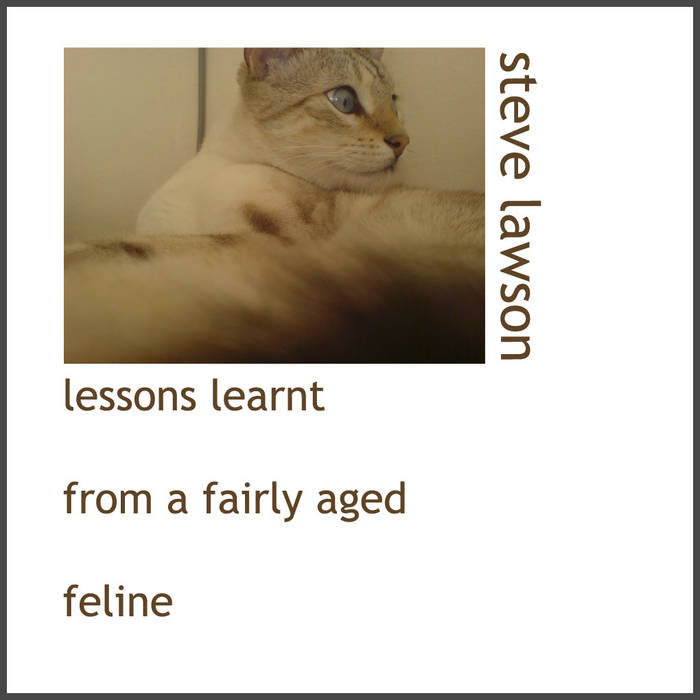 Lessons Learnt From An Aged Feline Pt I cover art