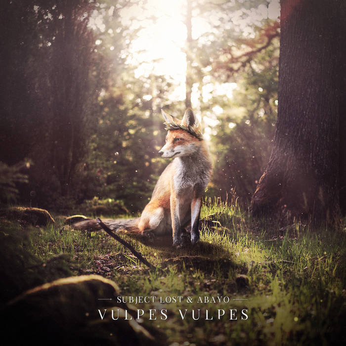Vulpes Vulpes cover art