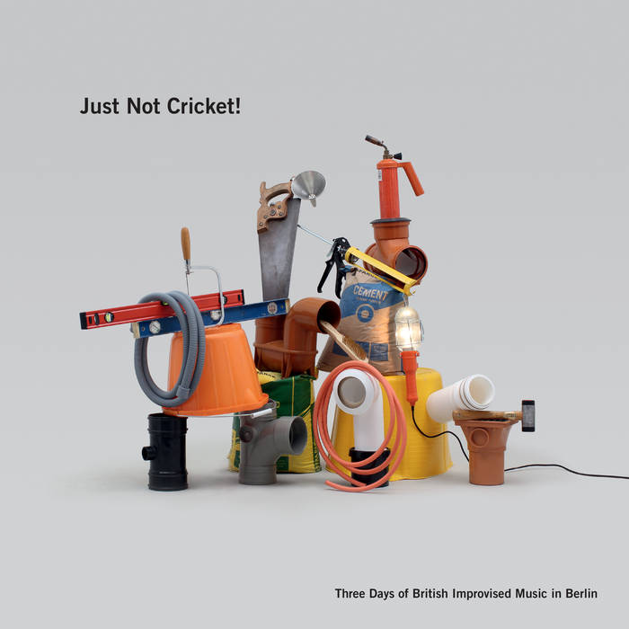 Just Not Cricket! cover art
