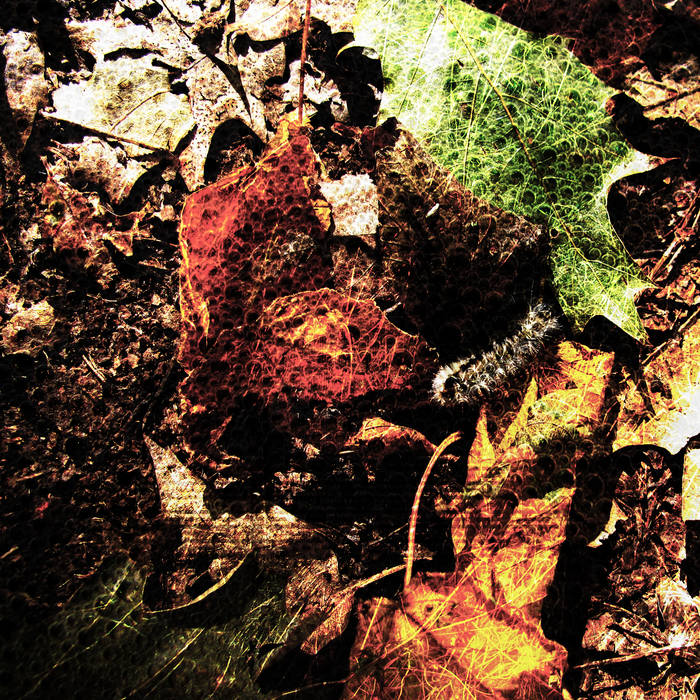 [OUT_27] Autumn Wilt cover art