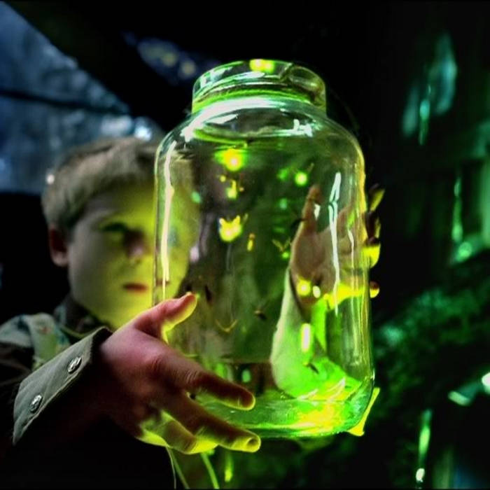 Fireflies (EP) cover art