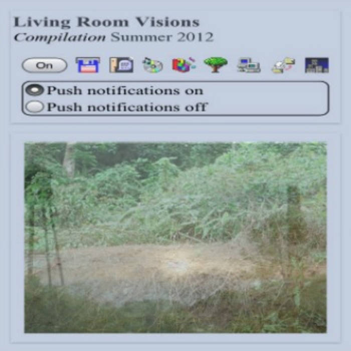 2012 Living Room Visions Summer Tape cover art