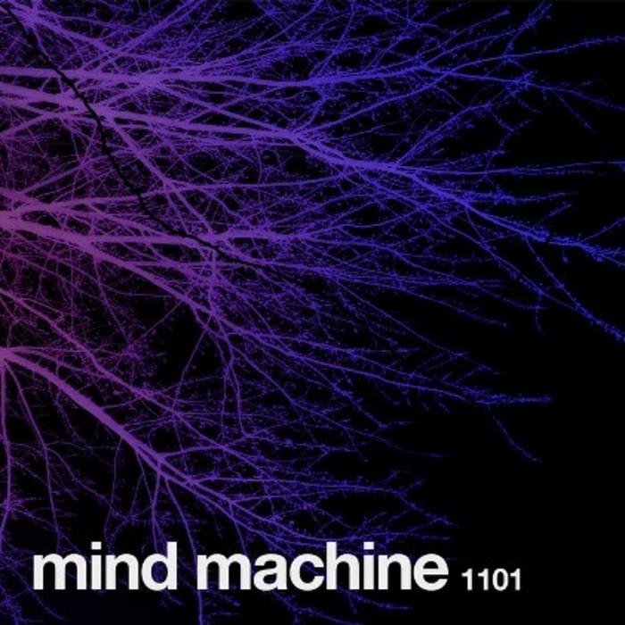 1101 cover art